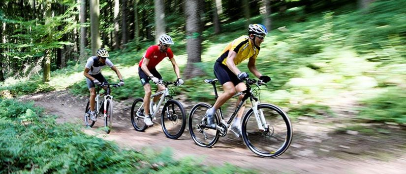 Three Mountainbikers racing on a single-trail through a forest in Germany. Click to see more in the MTB gallery.