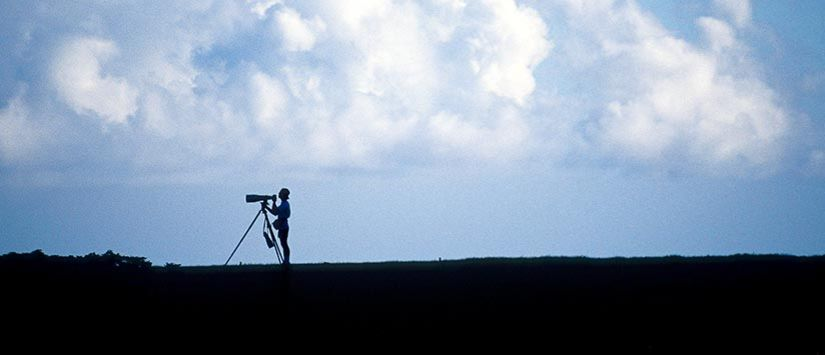 Thorsten Indra shooting with the long lens in Maui. Photo: Rüdiger Fessel
