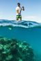 SUP paddler in Hawaii enjoying a view of the reef in the crystal-clear water of Maui's South shore